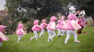 Kids in flamingo costumes chasing Bucky